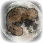 Wicca Beaver Moon November
