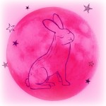 Pink Full Moon Hare